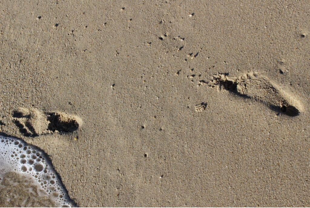 Footprints in the sand and the Three Principles