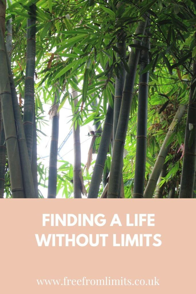 What does a life without limits look like? I'll tell you in this article!