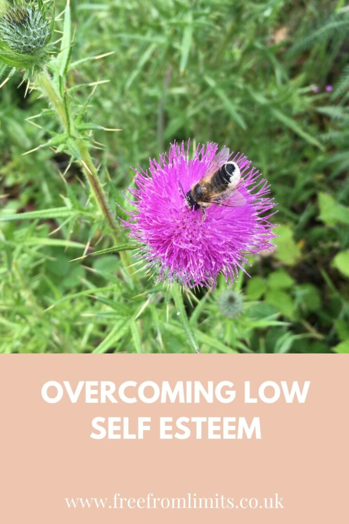Overcoming low self esteem: how a bee taught me what low self esteem really was.