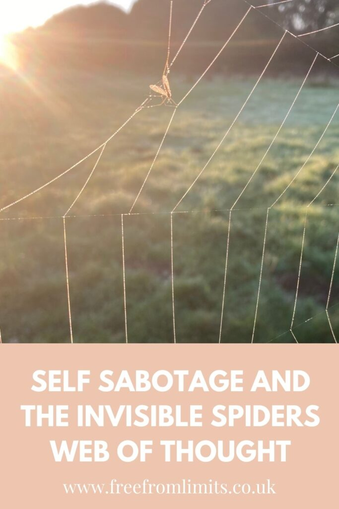 Do you find yourself not doing certain things that you'd like to do? If so read on. In this article I explore self sabotage and the many forms it appears in, along with exploring the invisible spiders web of thought. #thought #threeprinciples #selfsabotage #limitingbeliefs